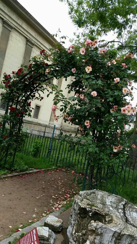 Erlebnisse in paris for Scopitone 2015 jardin des plantes